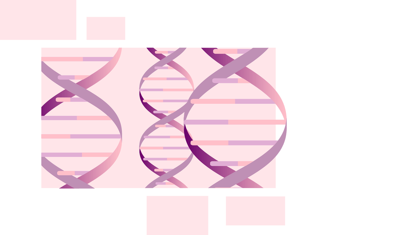 Illustration of three double-stranded helix